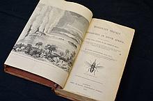 First edition David Livingstone