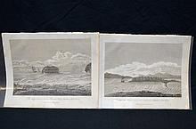 2 Plates from Grant Narrative...Lady Nelson 1803