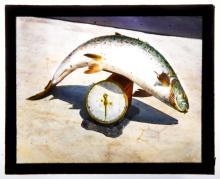 Magic Lantern Glass Slide Collection: Fishing/Maritime