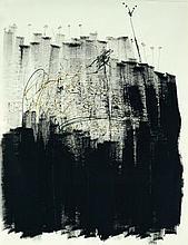 Khen Shish b. 1970 Grey Cloud and Bird's Foot