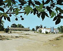 Assaf Shani b. 1976