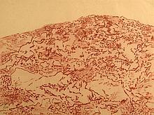 Leopold Krakauer 1890 - 1954, Jerusalem Hills,