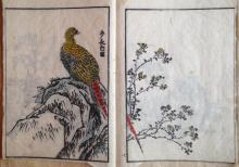 19th C. JAPANESE COLORED WOODBLOCK ALBUM WITH EXOTIC BIRDS, HORSE, FLORAL, OTHER ANIMALS (14)