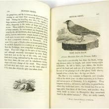 Natural History, 4 volumes, including Bewick, Thomas