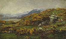 DAVID FARQUHARSON A.R.A., A.R.S.A., R.S.W., R.O.I (SCOTTISH 1840-1907) GORSE AND MAY 31cm x 51cm (12in x 20in)