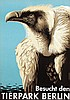 Poster by  Grohmann - Besucht den Tierpark Berlin (vulture), Kenneth Denton Shoesmith, €180