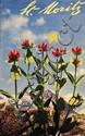 Poster by Walter Herdeg - St. Moritz