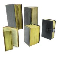 Lot of 5 Bibles