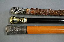 Three walking canes. One with gilt metal mount,