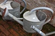 Vintage French gal metal watering can with rose