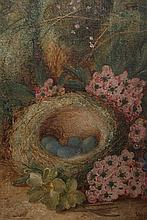 Vincent Clare (1855-1930), Still life of a bird's nest and still life of fruit, a pair, each signed lower right, oils on canvas, framed. 19.5cm by 14.5cm