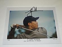 Tiger Woods Limited Edition Autographed Photo