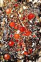 Waldemar Smolarek Abstract with Orange & Red Balls