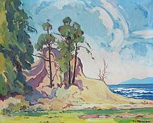 Mildred Valley Thornton B.C. Coastal Landscape
