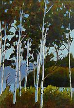Bill Townsend Birch Trees in Algonquin Park, Ontario