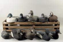 10 Carved & Painted Duck Decoys