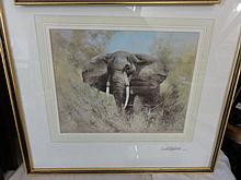 A signed coloured print after David Shepherd showing an elephant, signed to moun