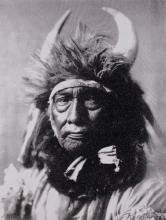 Bull Chief - Apsaroke