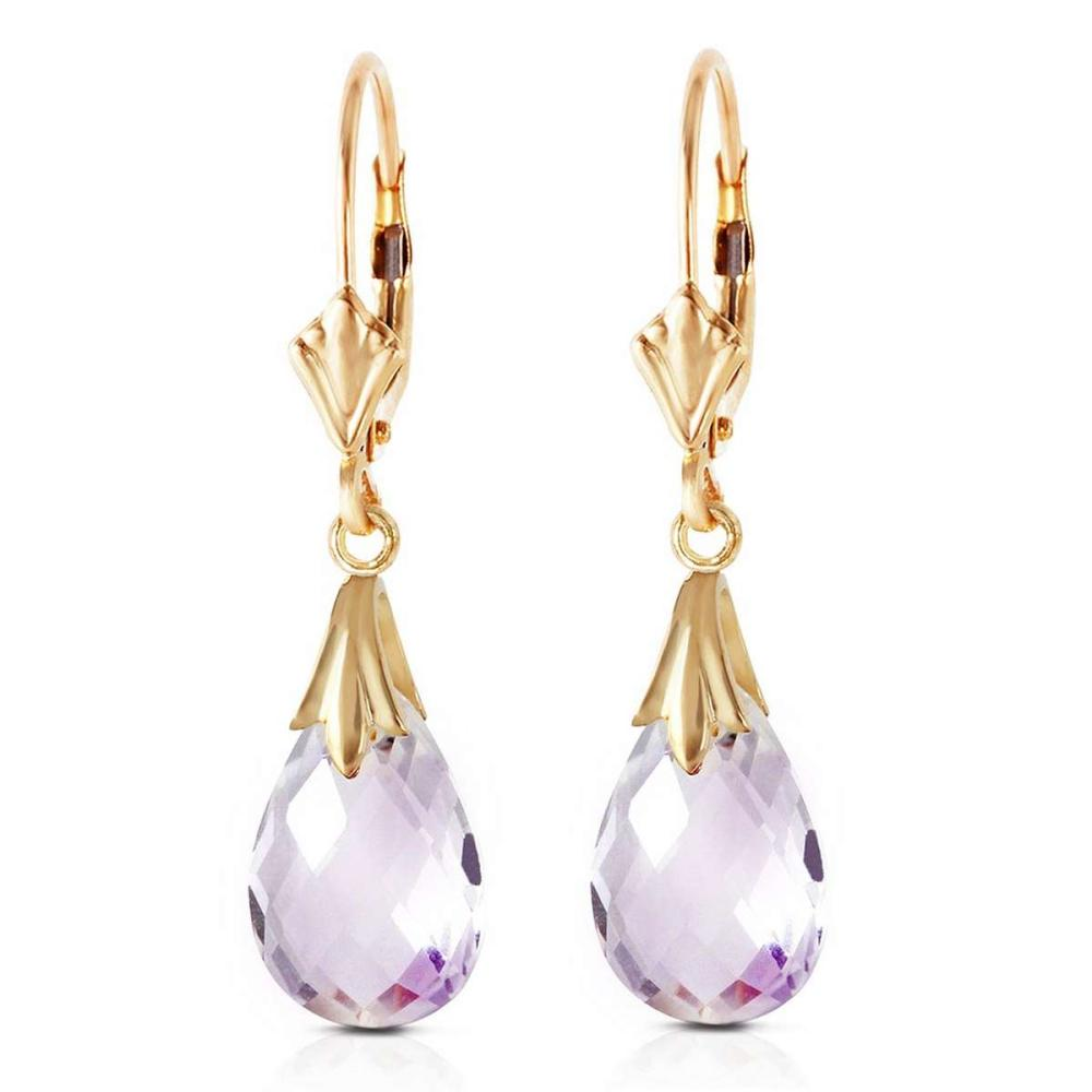 6 CTW 14K Solid Gold Sanctuary Amethyst Earrings