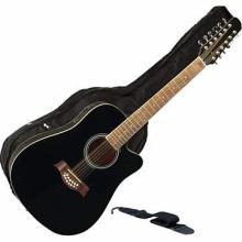 Maxam 12-String 41