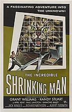 Film Posters: The Incredible Shrinking Man