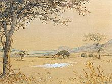 Erich Mayer (SA 1876 - 1960) Mixed Media, Extensive Landscape