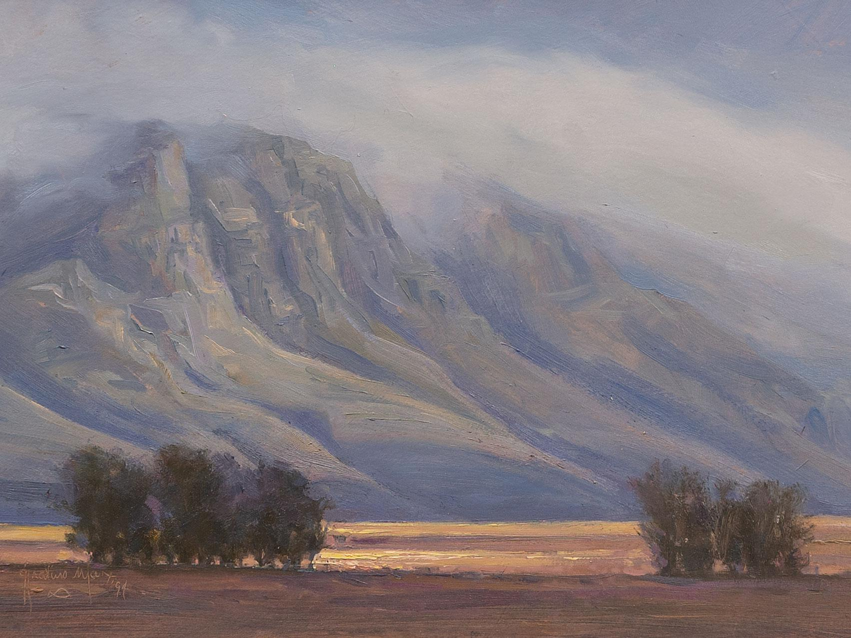 """Ignatius Marx (SA, born 1962) Oil, """"Overberg Afternoon"""", Signed & Dated '94 Titled Verso, 21 x 37"""