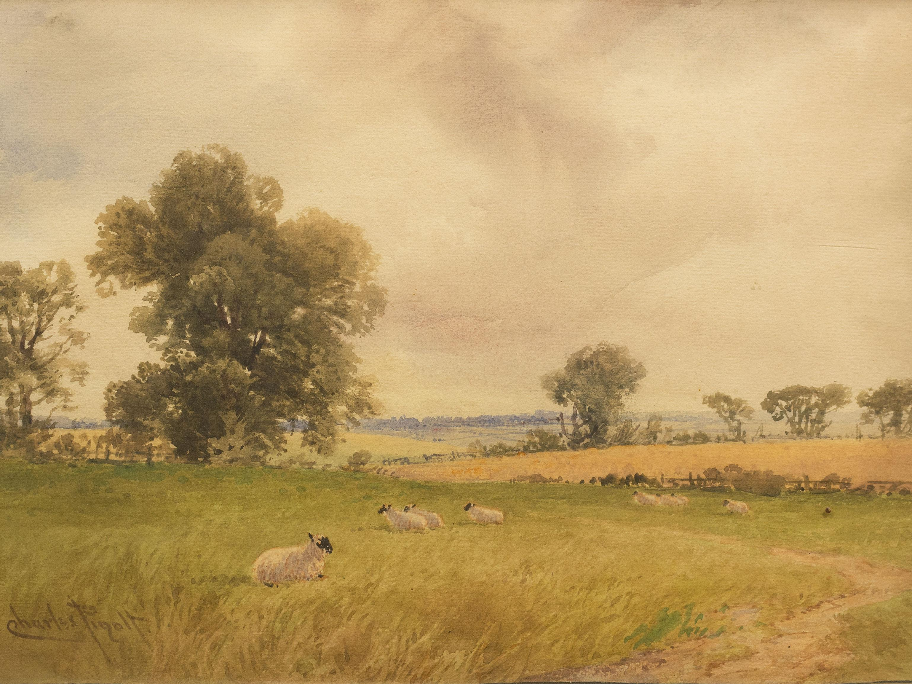 Charles Pigott (British 1863 - 1940) 4 x Watercolours, English Country Scenes with Sheep, Signed, 20 x 30 each