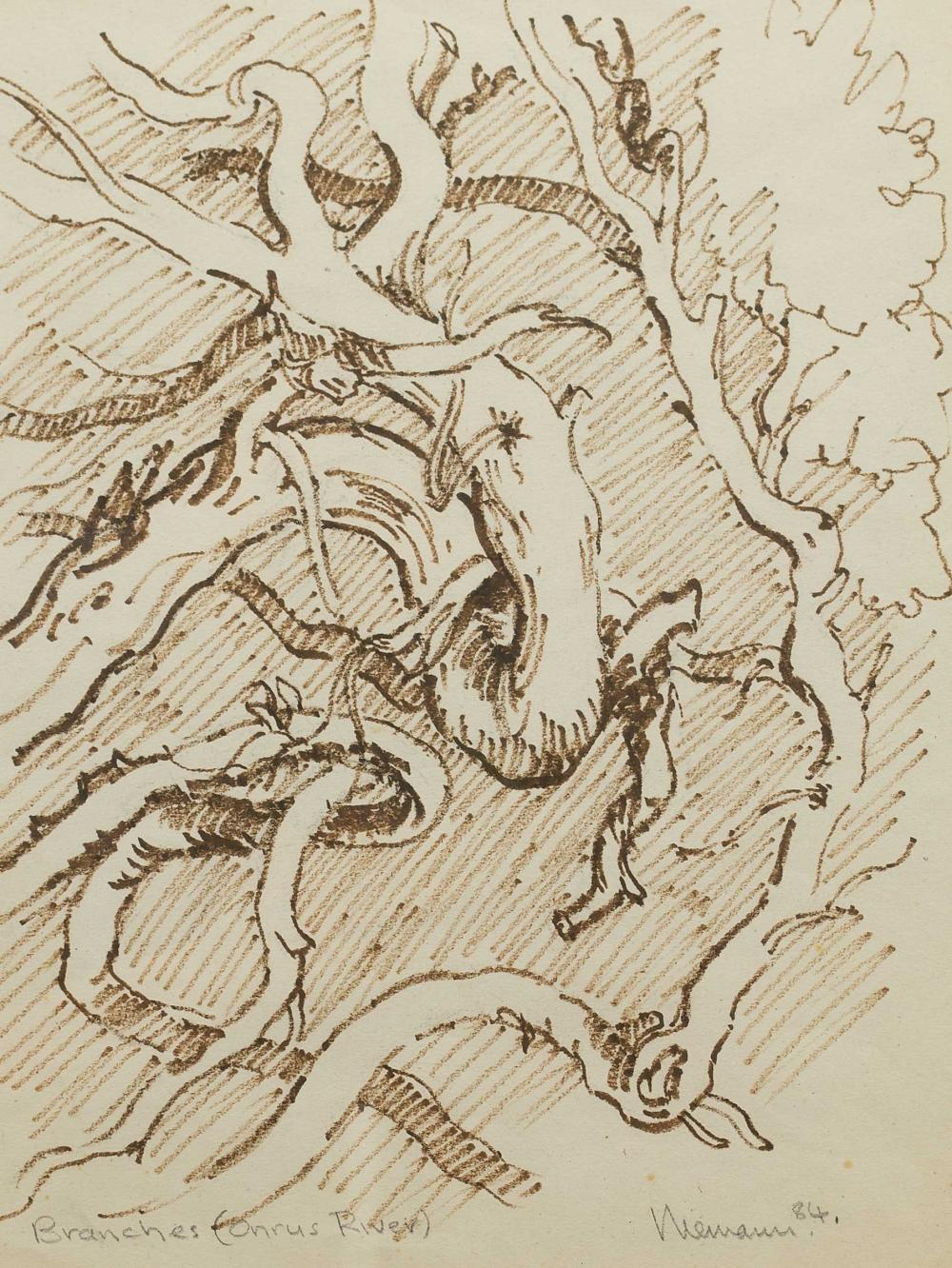 "Hennie Niemann (SA, born 1941) Drawing, ""Branches (Onrus River)"", Signed Titled & Dated '84 in Pencil, 36 x 29"
