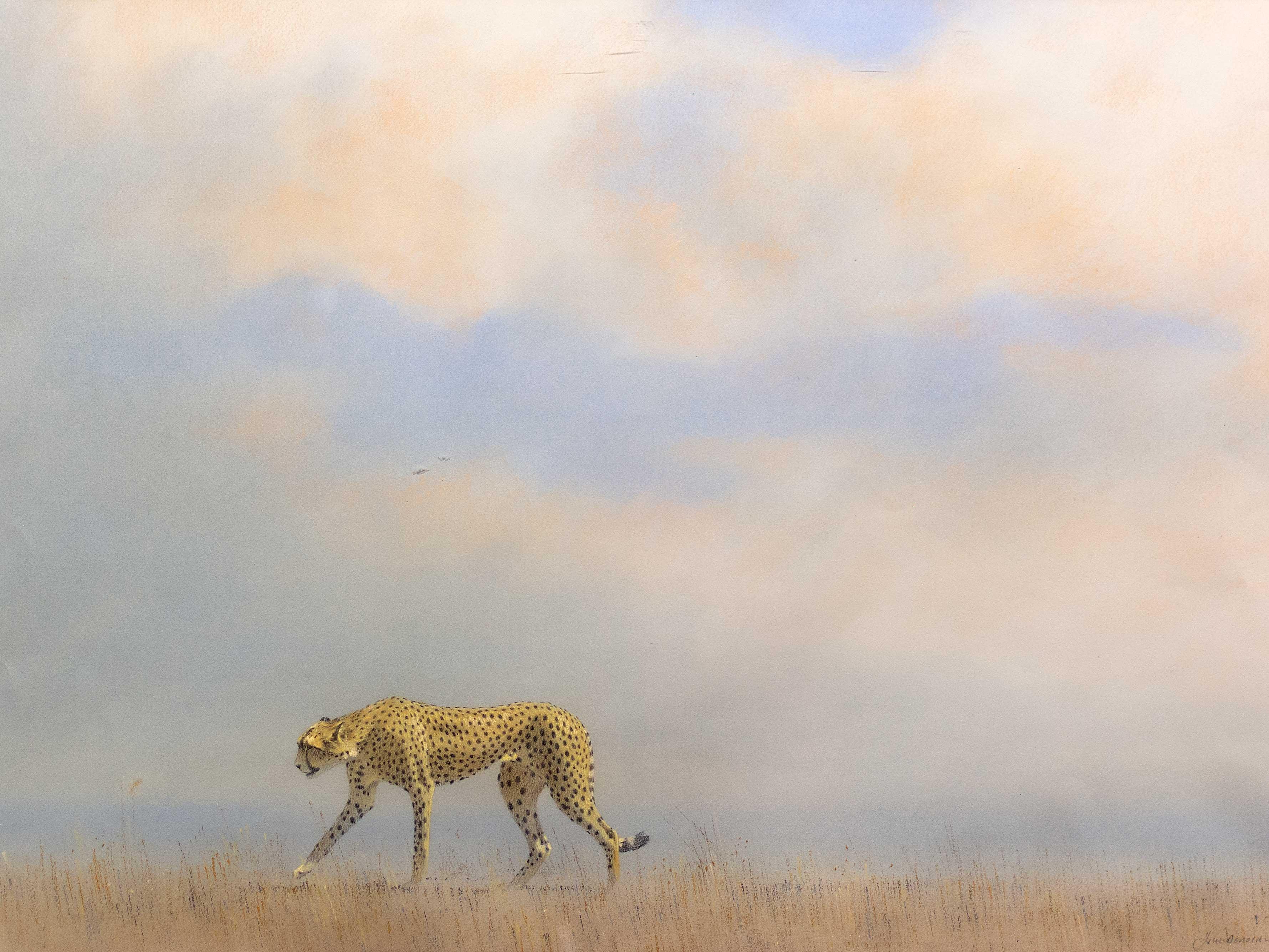 Kim Donaldson (SA, born 1952) Pastel, Cheetah, Signed, 50 x 74