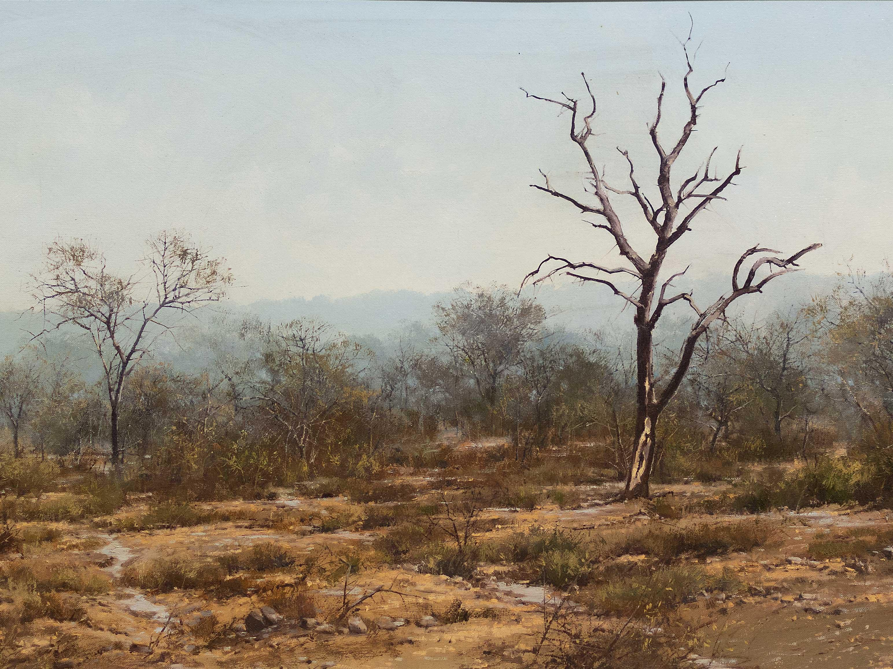 Francois Koch (SA, Born 1944) Oil, Bushveld Landscape, Signed & Dated '78, 50 x 100
