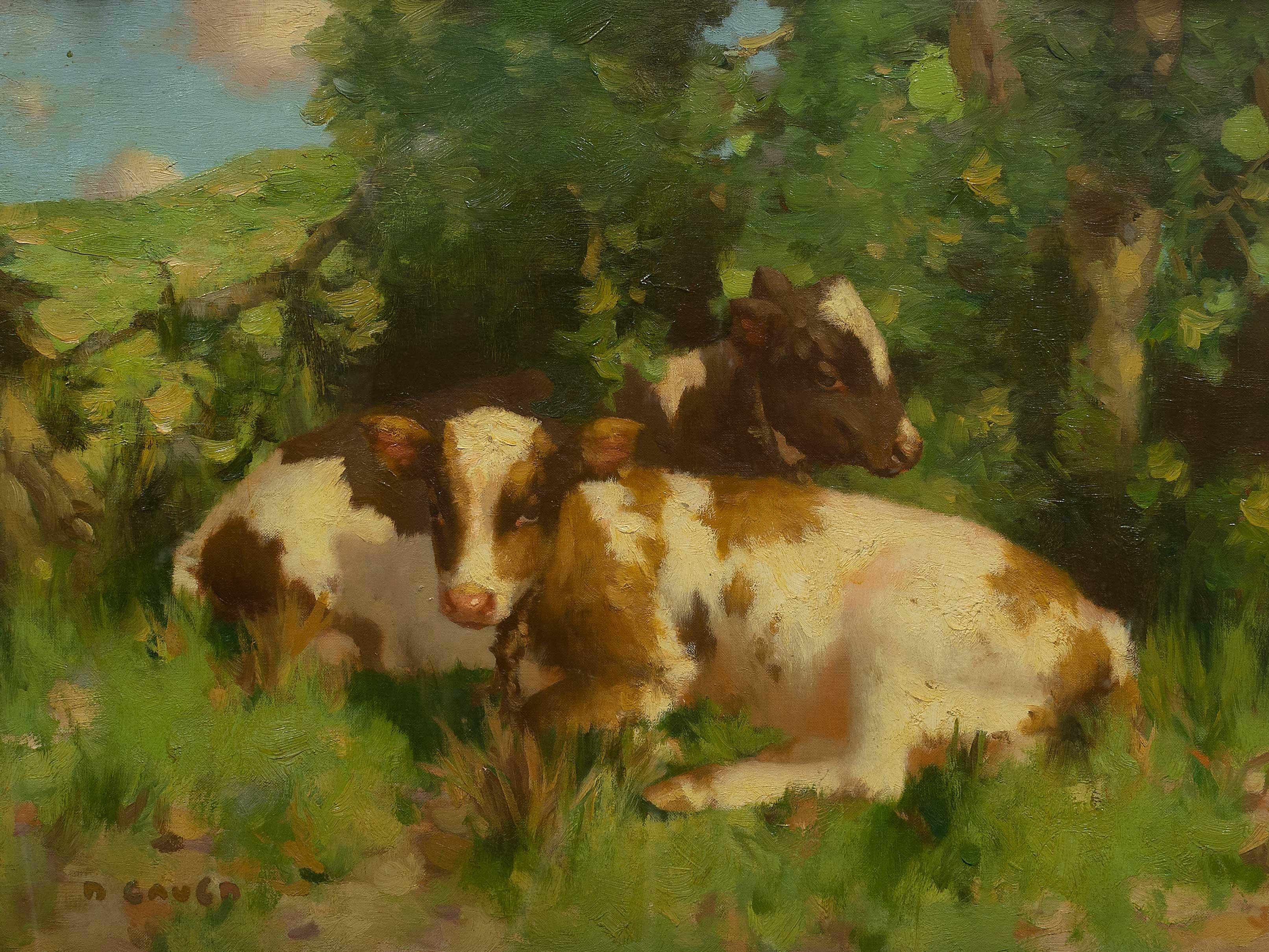 David Gauld (Scottish 1865 - 1936) Oil, Cattle, Signed, 50 x 75