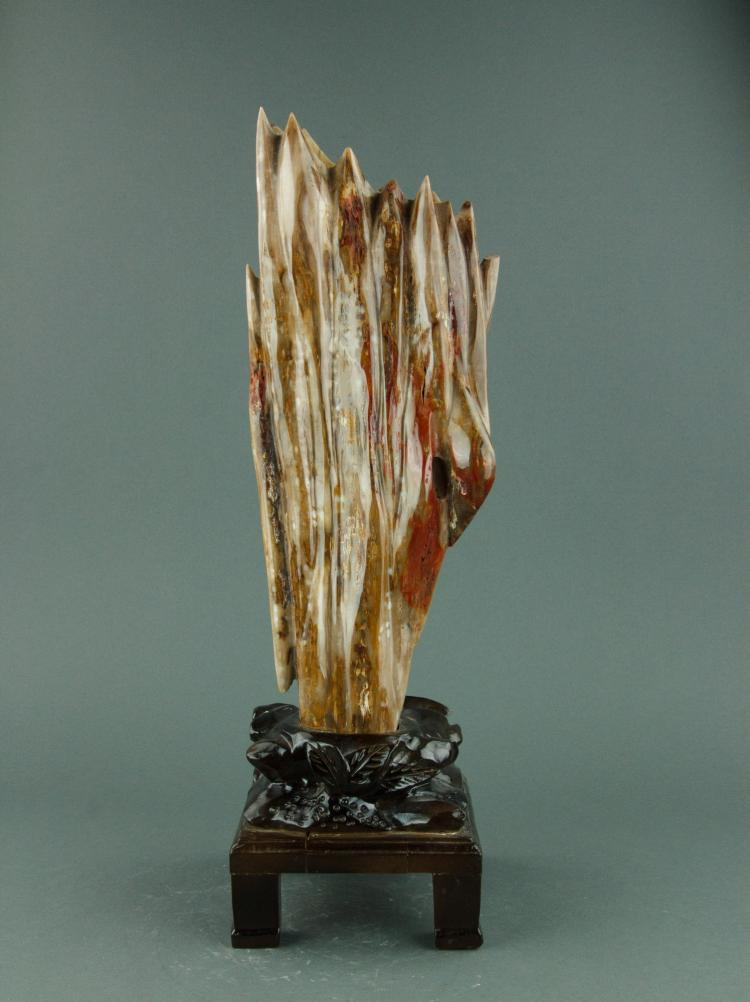 Chinese Fine Wood Fossil Scholar Stone with Stand