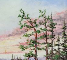 Lot 12: Canadian Oil on Board Landscape Framed