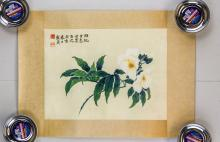 Lot 85: Yu Zhizhen 1915-1995 Chinese Watercolor Flower