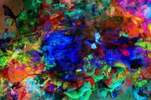 Butterfly Effect III | Original Fine Art