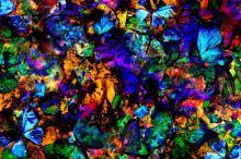 Butterfly Effect II | Original Fine Art