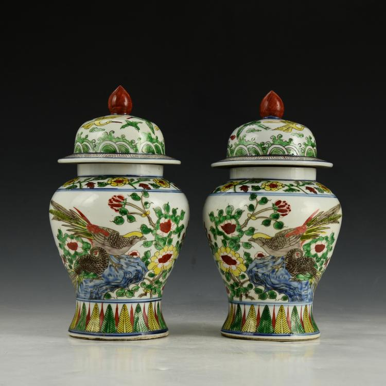 Pair of Chinese WuCai Jar with Cover