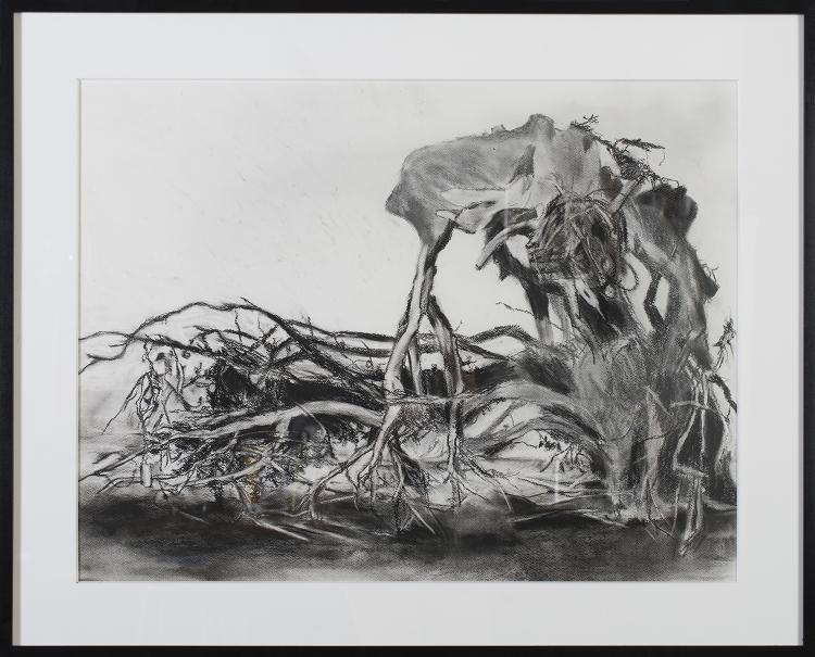 Root II
