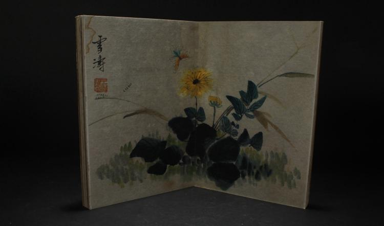 A Chinese Inscet-portrait Estate Book Display