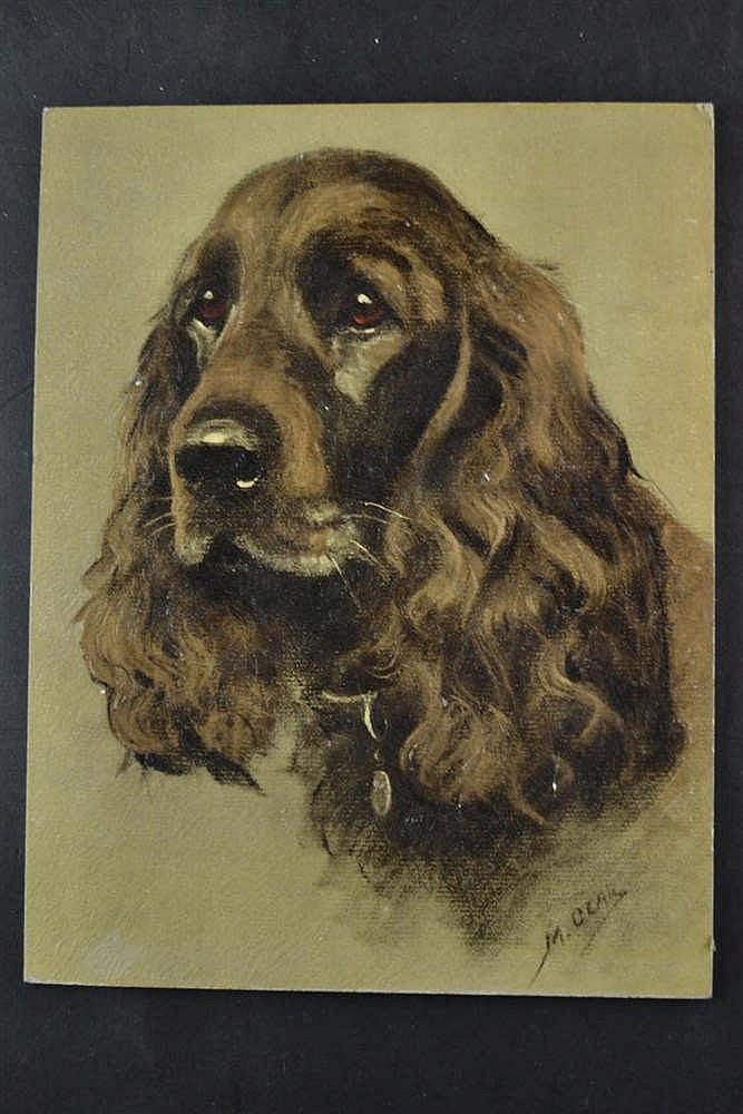 Marjo Glas - Portret hond