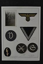 (NSDAP) Luftwaffe/Wehrmacht Insignia