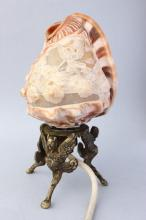 Cameo Shell Bedside Lamp,