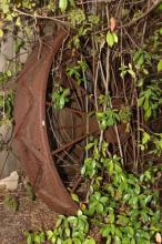 Large Metal Wheel,