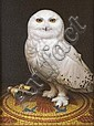 Brian McCarthy (b.1960) Snowy owl Oil on canvas,, Brian McCarthy, Click for value