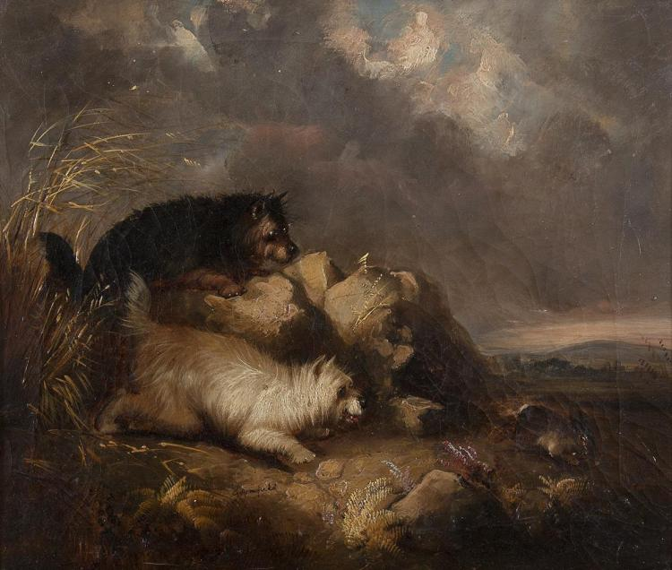 GEORGE ARMFIELD (c.1808-1893)Two Terriers Chasing a RabbitOil on canvas, 30.5 x 35.5cm (12 x 14)Signed 'G. Armfield'