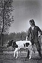 Young Farmer with Calf, Vincent Mentzel, Click for value