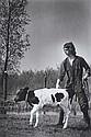 Young Farmer with Calf, Vincent Mentzel, Click for value