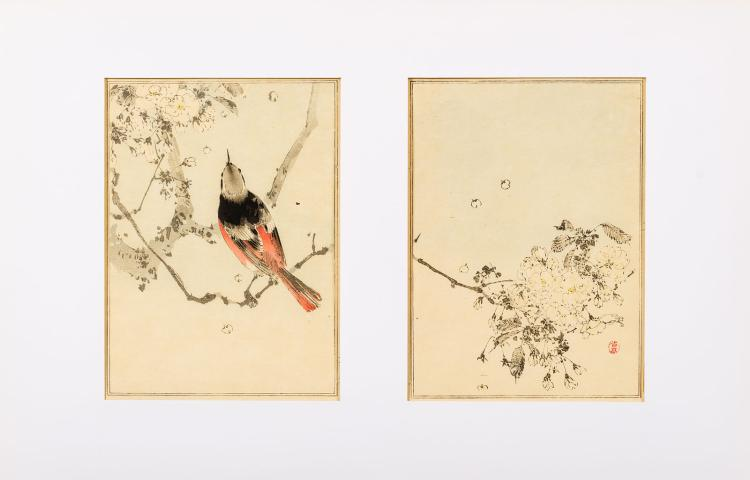 100 ravishing woodcuts in colours from 1890 albums by Watanabe Seitei