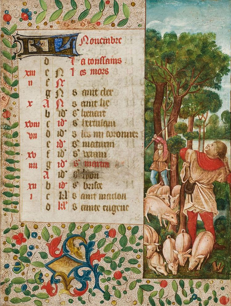 November, gathering acorns. Calendar leaf with very charming miniature